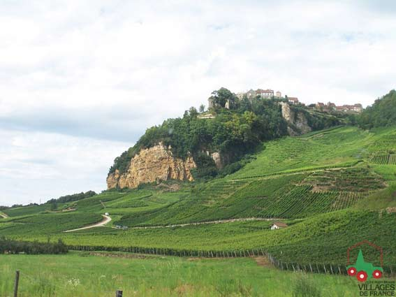 Château Chalon Jean Macle